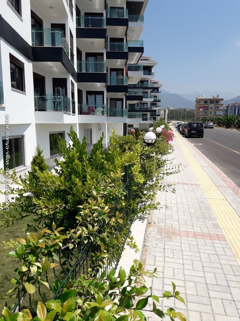 ali_iscituerk_alanya_villas_and_homes_com_immobilien_whatsapp_00905078878235_real_estate217.jpg